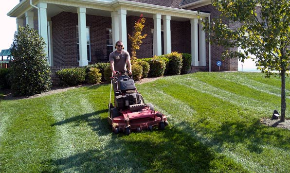 Picture of Commercial Lawn and Grass Mower