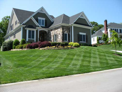 Use our Coupons to keep your yard beautiful all year long !